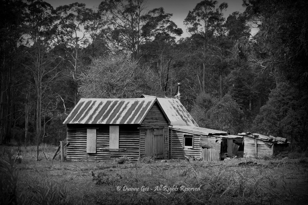 Old Settler's Hut by Dianne Gee