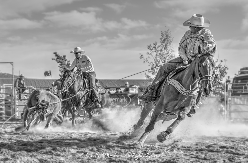 Team Roping by Beth Westra