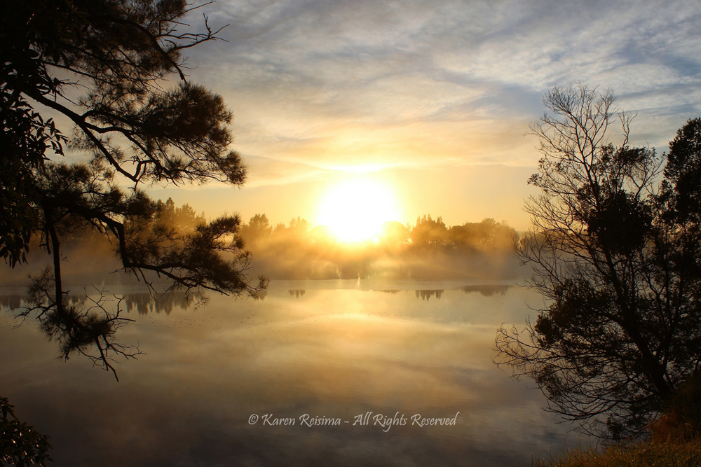 Good Morning by Karen Reisima