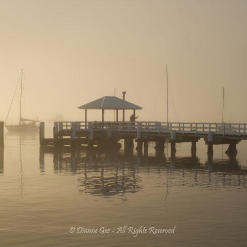 Heavy Mist by Dianne Gee