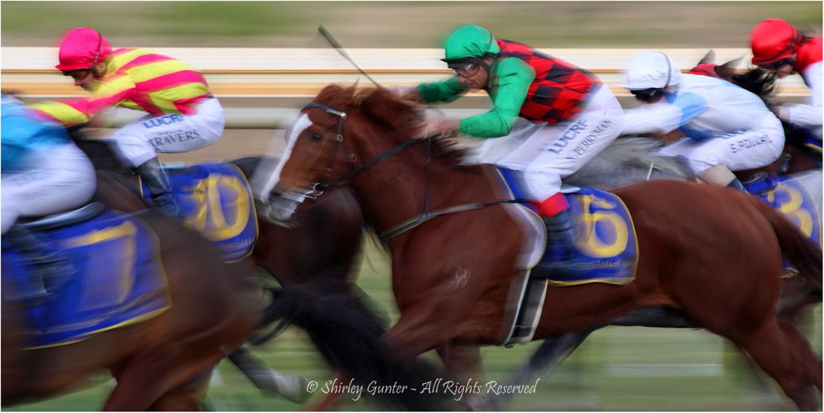 Race no. 4 by Shirley Gunter