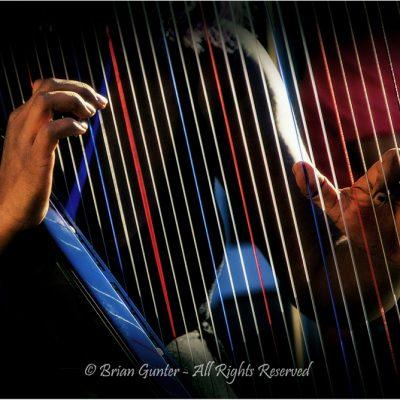 Magic Fingers by Brian Gunter