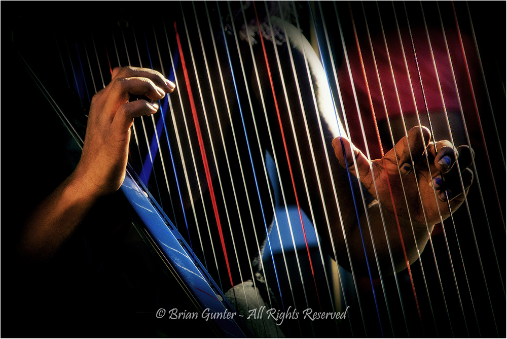 Magic Fingers by Brian Gunter - Image of the Night