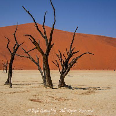 Namib by Rob Geraghty