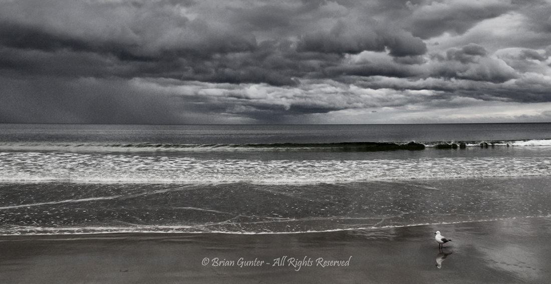 Pambula Beach by Brian Gunter