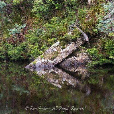 Gordon River Tas by Ken Foster