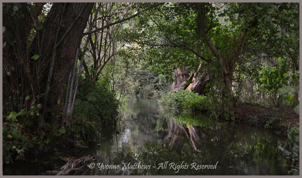 Monet's Hometown by Yvonne Matthews